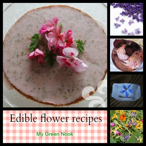 Edible flower recipes - My Green Nook