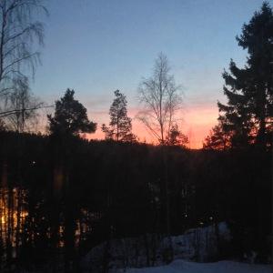 Peach skies, winter evening - My Green Nook