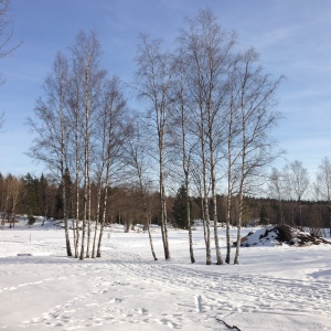 Blue skies, walking mindful - My Green Nook