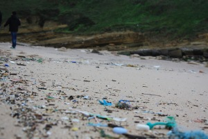 Beach. Plastic pollution | My Green Nook