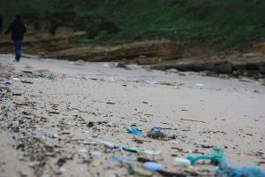 Beach. Plastic pollution | My Green Nook