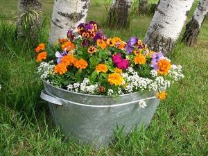 Flower container. Start a Garden | My Green Nook