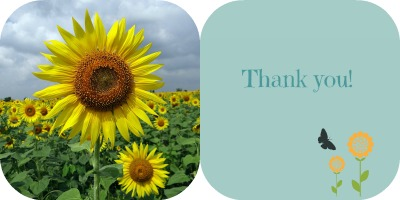 Thank you! A to Z Challenge
