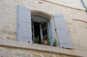 Open Window. New Challenges | My Green Nook