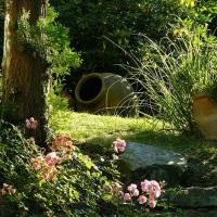 A Gardener's Design Tips